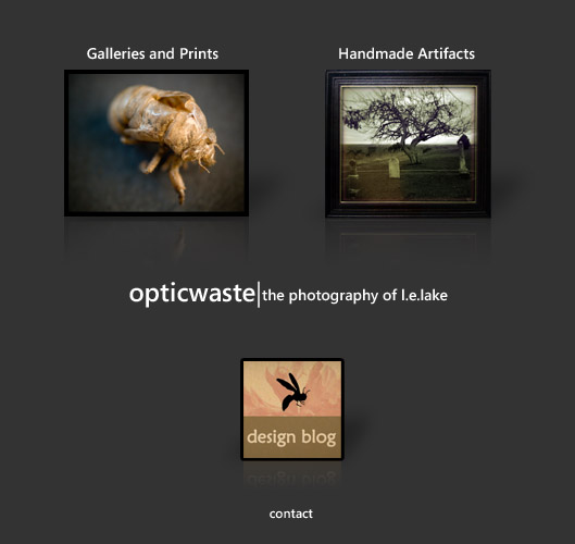 opticwaste - the photography of l.e.lake